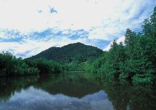 Mount Bintan-民丹岛-用户45933