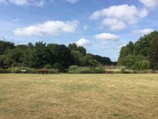 圣詹姆斯公园-伦敦-石头乐