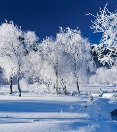 和田游记图文-冬季游新疆,我建议你这样玩,够嗨够有趣|干货攻略集