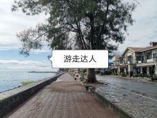 杜马盖地海滨大道-杜马盖地-世界美食游走达人