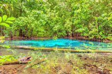 翡翠湖-甲米-doris圈圈