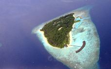 维利甘度岛-绚丽岛-doris圈圈