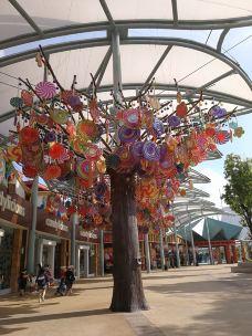 Candylicious糖果店-新加坡-带着俩娃走天下