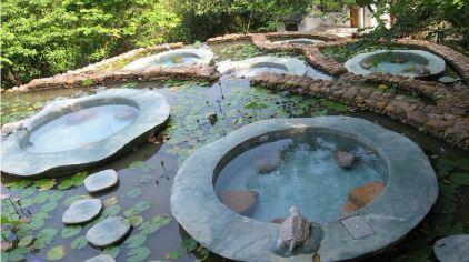 金龟泉温泉度假村 (2)