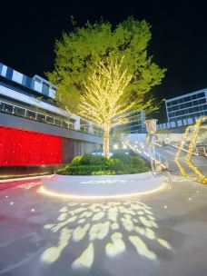 龙湖金沙天街-杭州-杉尼