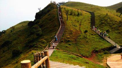 天龙顶国家山地公园  (10)