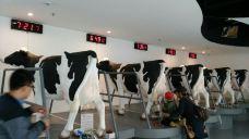 蒙牛工业旅游景区-和林格尔-牧之
