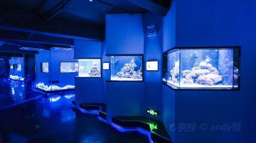 #5#珊瑚礁海洋生态馆
