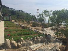 长海哈仙岛哈仙五虎石度假村-长海