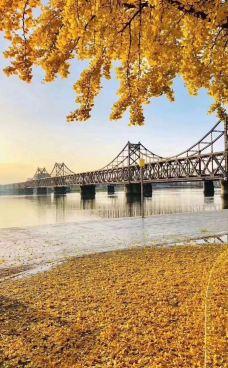 鸭绿江大道-丹东-laliga