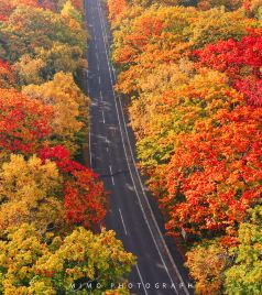 北海道游记图文-北海道的东:你一定知道很多如诗且如画的风景