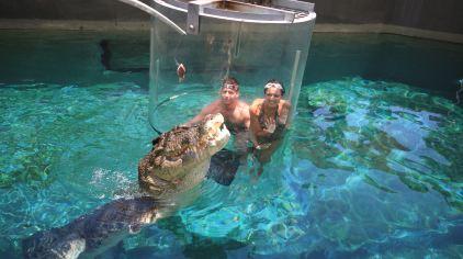 可可洛思鳄鱼湾主题公园4