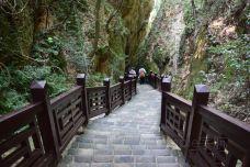 翠微峰国家森林公园-宁都-simple宇航