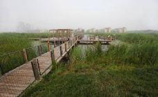 东丽湖三期湿地公园-天津-186****9152
