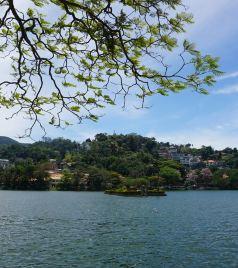斯里兰卡游记图文-O眼看世界----斯里兰卡20日之康提
