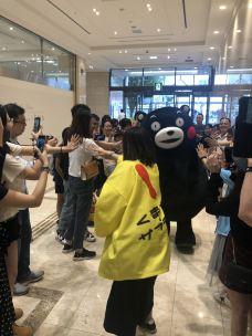 熊本熊部长办公室-熊本-helenzbb