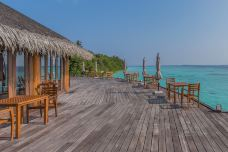 神仙珊瑚岛-神仙珊瑚岛-doris圈圈