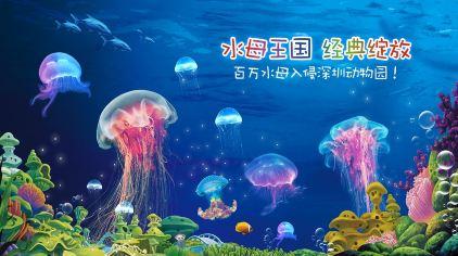 深圳野生动物园 (4)