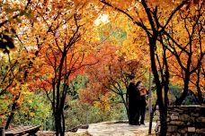 坡峰岭-北京-doris圈圈