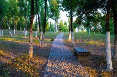 东小口森林公园-昌平区-小宇Sylvia