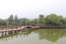 东昌湖湿地岛休闲渔业公园-聊城-AIian