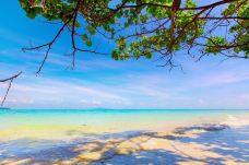 蓝通湾-皮皮岛-尊敬的会员