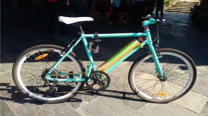 龙池山电动助力自行车 (2)
