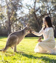 阿德莱德游记图文-这就是南澳大利亚,美食美酒享不停