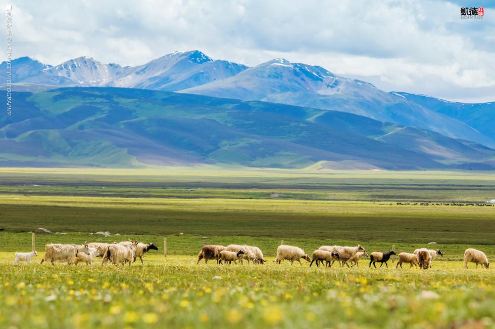 带你去追光,西藏318国道航拍之旅 - 西藏游记攻略【携程攻略】