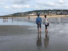 多维尔海滩-多维尔-虎步世界