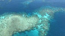 摩尔外堡礁