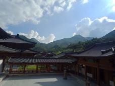 万福寺-福清-zyh1359987****
