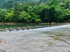 龙湾潭国家森林公园-永嘉-C-IMAGE