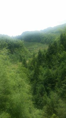 万寿园景区-三清山-M25****5064