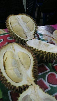 Rumah Durian Radit-北干巴鲁