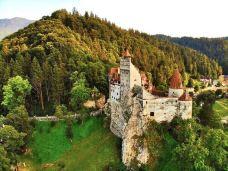 布朗城堡-波托菲诺-zhangz****gjing