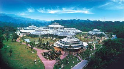 华南植物园 (6)