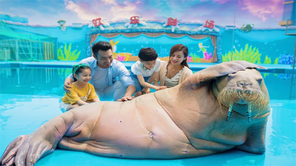 Special Offer | Qingdao Haichang Polar Ocean World Admission Ticket