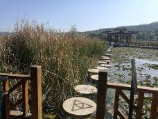 晚霞湖国家水利风景区-陇南-大龙哥哥