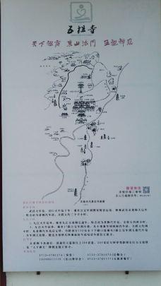 五祖寺-黄梅-M32****444