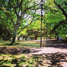 阿尔伯特公园-奥克兰