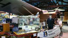 Sir Reginald Ansett Transport Museum-汉密尔顿