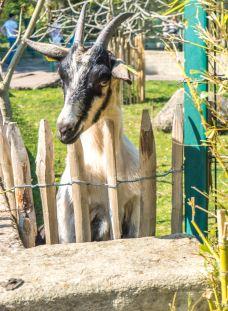奥尔良花泉公园-奥尔良-C年度签约摄影师