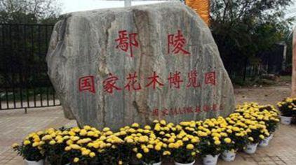 鄢陵花博园 (4)