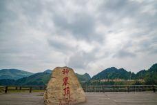 snj (230)-神农顶风景区-神农架-石耀臣