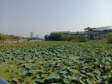 少海新城-胶州-M34****5514