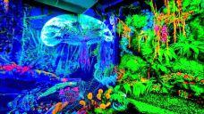 槟城黑暗3D荧光博物馆-乔治市-AIian