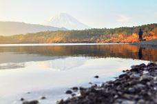 西湖-富士河口湖町-doris圈圈