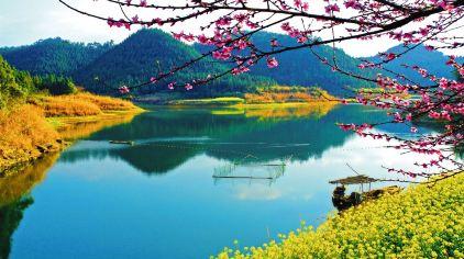 龙川湾109871  (12)