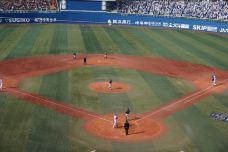 横滨棒球场-横滨-110****435